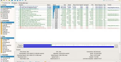 programa abrir torrent