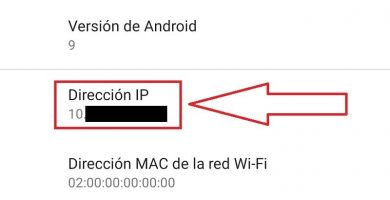 ip del movil