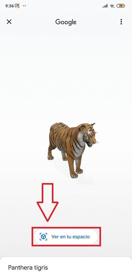 animales de google 3d