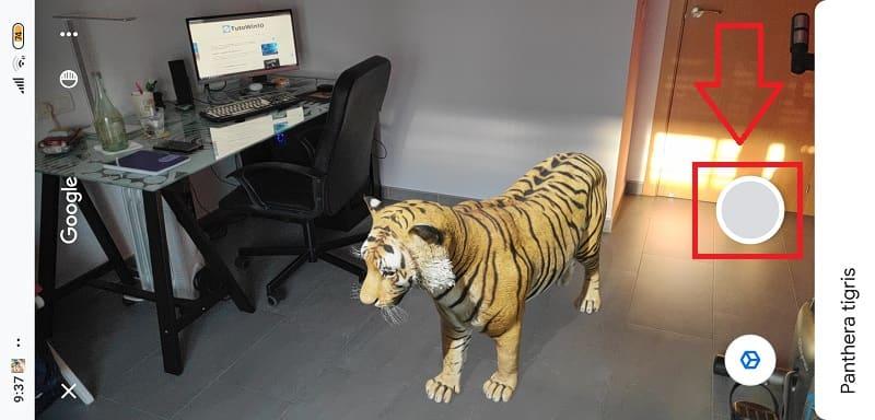 animales en 3d google