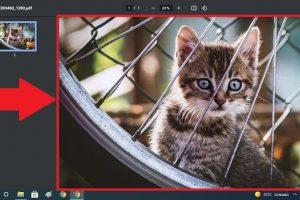 foto JPG a PDF.