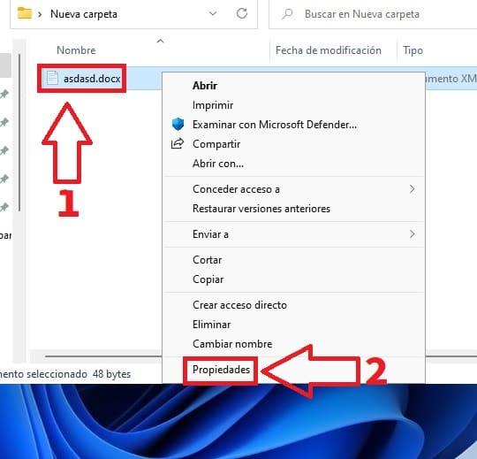 propiedades Windows 11.